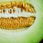 メロンは食べ過ぎると下痢になる?その原因と治す方法は?