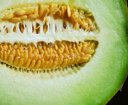メロン 食べ過ぎ 下痢
