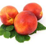 桃につく害虫の駆除、その方法と対策は?