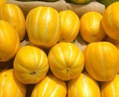 メロン フルーツ 合う 食べ物