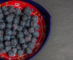 ブルーベリー 苗木 種類 値段