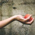 桃の糖度をアップさせる肥料は?