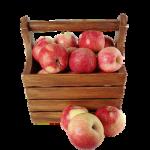 便秘にりんご?便秘に効くりんごの食べ方や量について!意外と知らないりんごの秘密?!