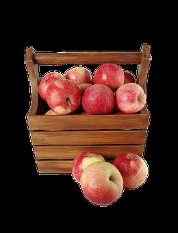 便秘 りんご 食べ方 量 秘密