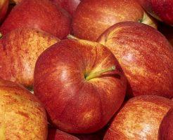 りんご 世界 品種