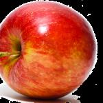 りんごが日光当てないことによって白くなる理由とは?