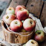 リンゴの幹の病気とは