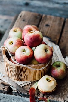 リンゴ           幹           病気