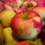 りんごはドライフルーツにすると栄養価やカロリーが変わる?