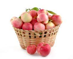 りんご 旬 時期