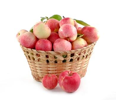 リンゴ アブラムシ 農薬 防除 対策
