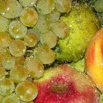 桃が水に浮く理由はどうして?