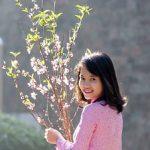 桃をアルミホイルで保存する理由について