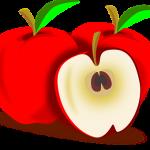 りんごに与える肥料の種類は? どれぐらいの量?