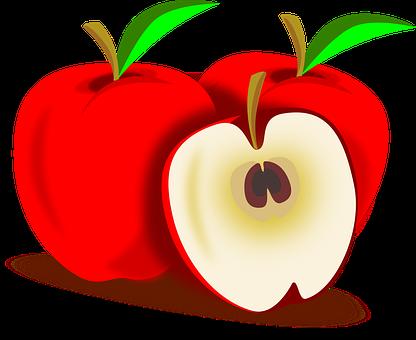 りんご 肥料 種類 量