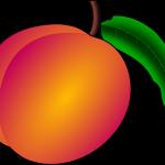 桃のジャムが固まらない原因は何?その対策について