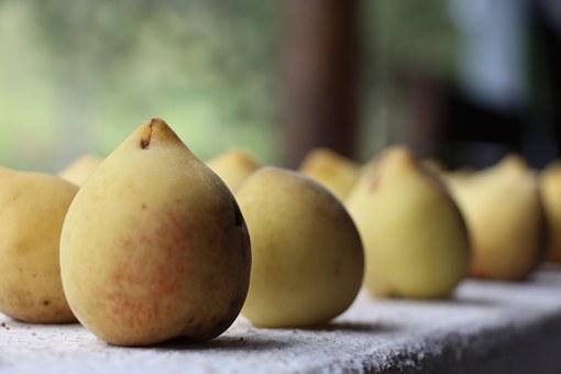 桃 カロリー 糖質