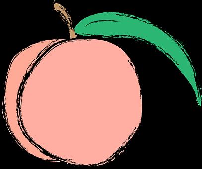 桃 袋 種類
