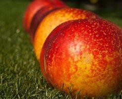 桃 葉 病気 赤い斑点