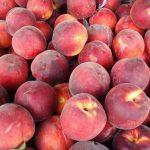 桃のアレルギー症状の原因と対処法について
