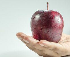 りんご 害虫被害 対策