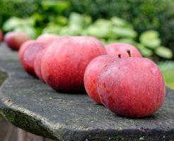 リンゴ 追熟 期間