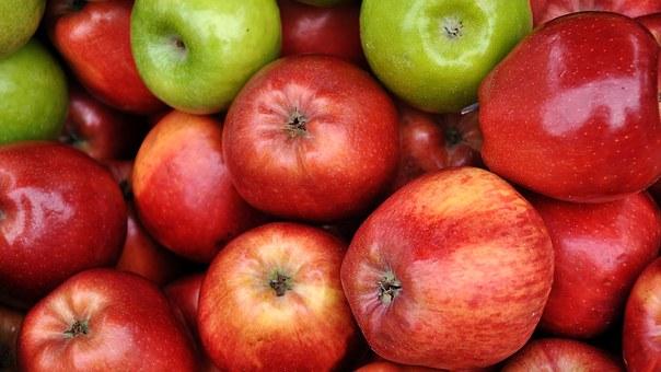 りんご 木 高さ 寿命